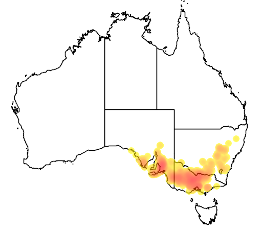 Acacia acinacea flora location map
