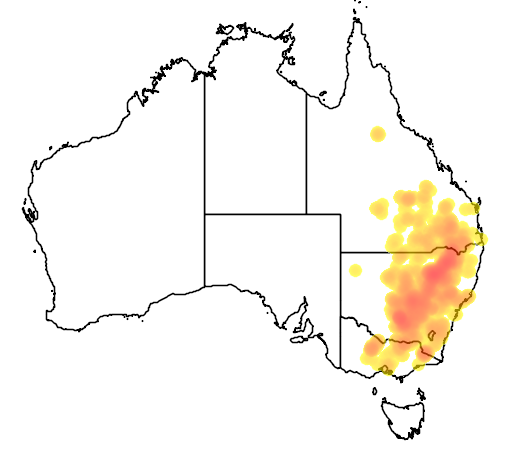 Acacia deanei subsp deanei flora location map
