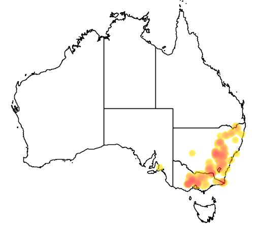 Acacia lanigera flora location map