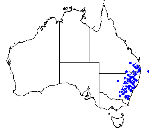 Acacia leucoclada flora location map