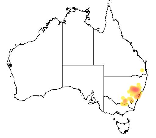 Acacia linearifolia flora location map