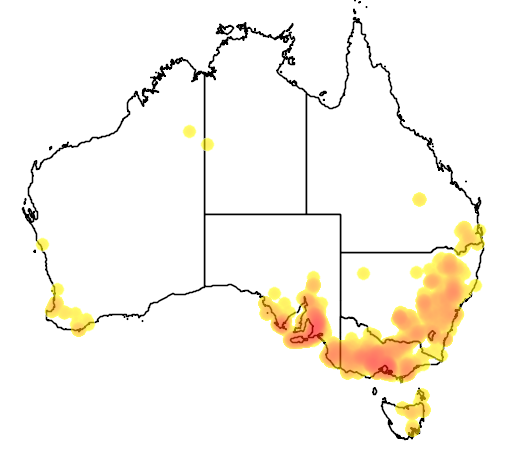 Acacia paradoxa flora location map