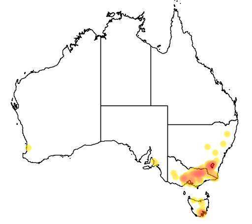 Acacia pravissima flora location map