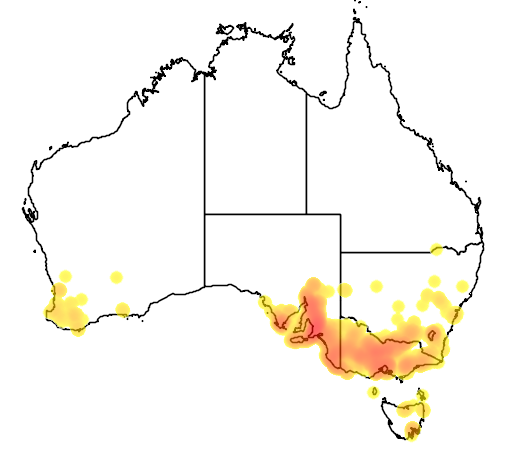 Acacia pycnantha flora location map