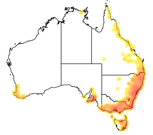 Adiantum aethiopicum flora location map