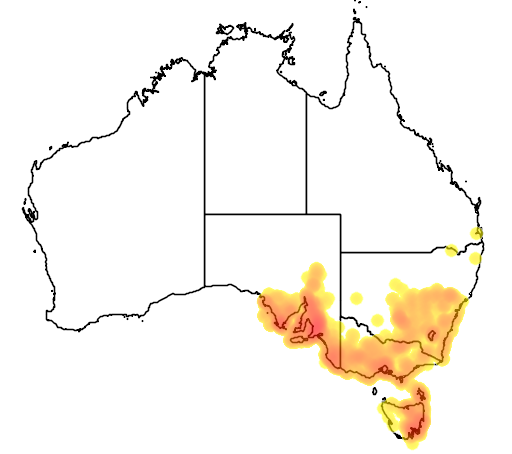 Allocasuarina verticillata flora location map