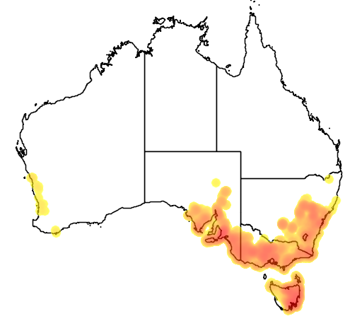 Astroloma humifusum flora location map