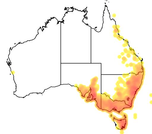 Bursaria spinosa flora location map