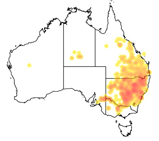 Calotis cuneifolia flora location map