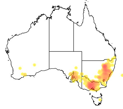 Cassinia arcuata flora location map