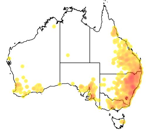 Cheilanthes distans flora location map