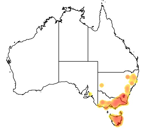 Coprosma hirtella flora location map