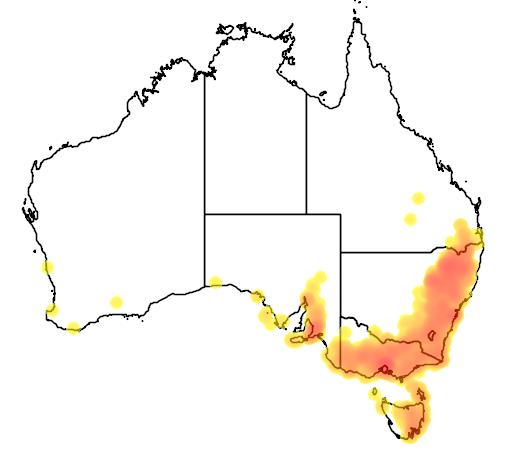 Danthonia racemosa flora location map