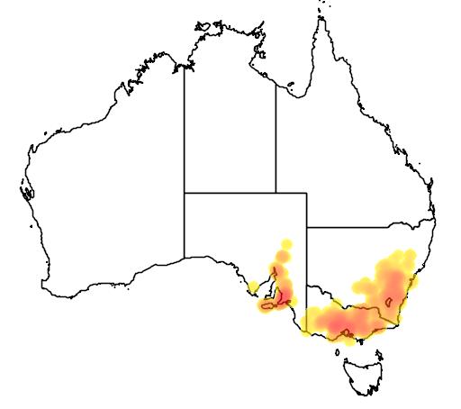 Daviesia leptophylla flora location map