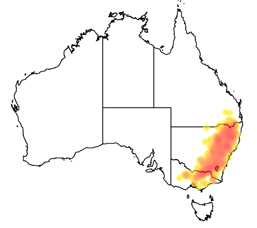 Eucalyptus blakelyi flora location map