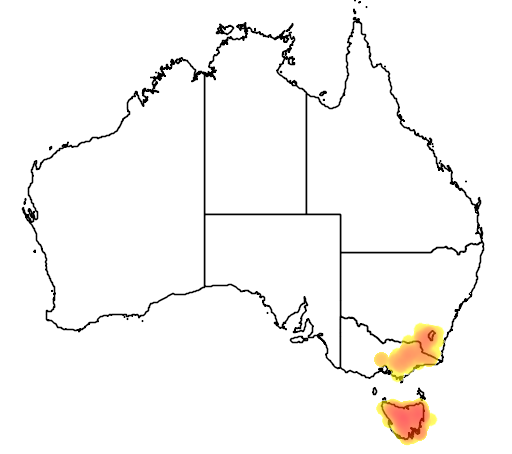 Eucalyptus delegatensis flora location map