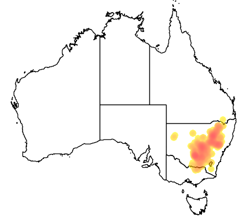 Eucalyptus dwyeri flora location map