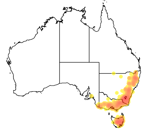 Eucalyptus pauciflora flora location map