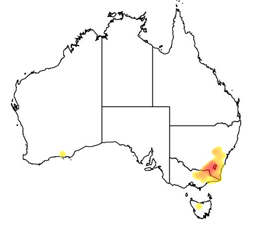 Robertson S Peppermint Wt Landcare Flora Index