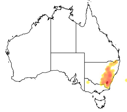 Eucalyptus rossii flora location map