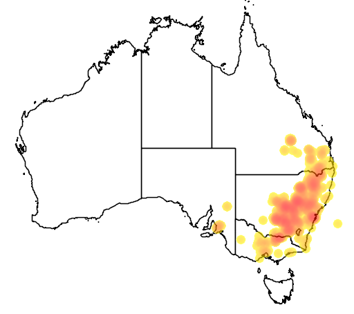 Eucalyptus sideroxylon flora location map