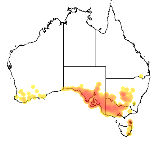 Eutaxia microphylla flora location map