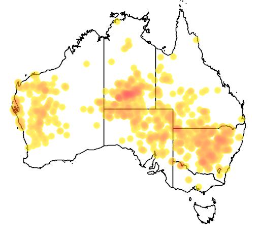 Glycine canescens flora location map
