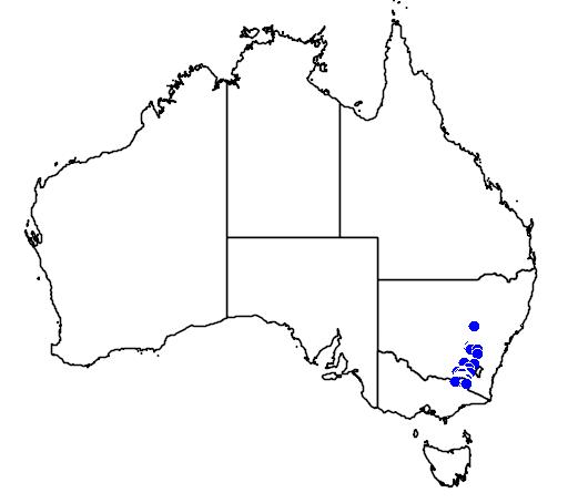 Grevillea polybractea flora location map
