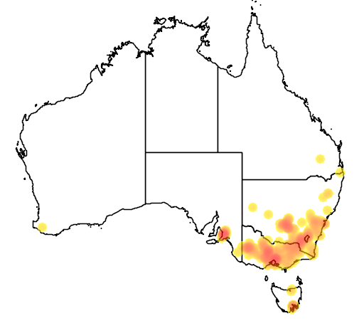 Grevillea rosmarinifolia flora location map