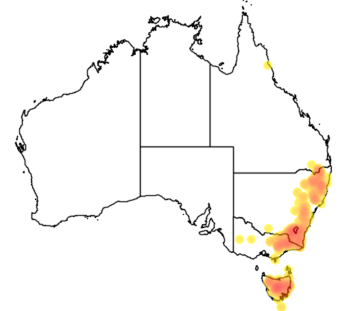 Hakea microcarpa flora location map