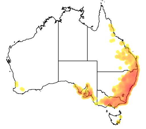 Hardenbergia violacea flora location map