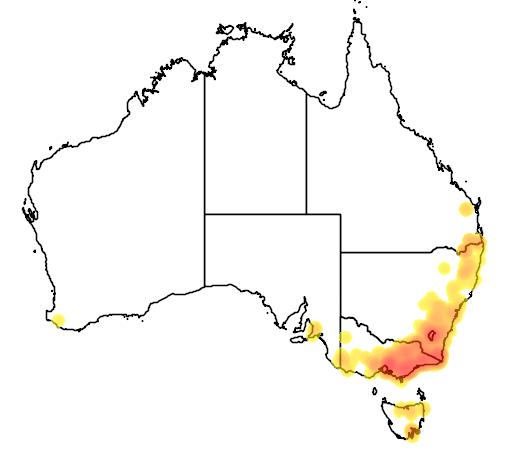 Kunzea ericoides flora location map