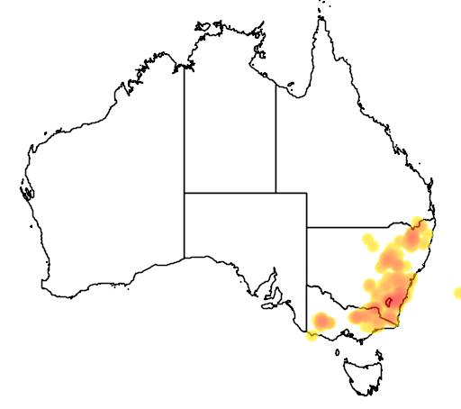 Kunzea parvifolia flora location map
