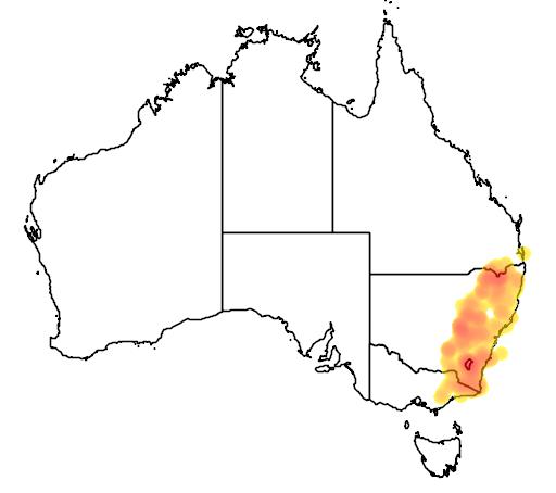 Leucopogon attenuatus flora location map