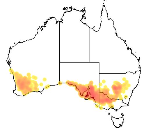 Lomandra effusa flora location map