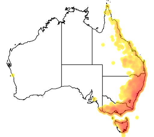 Lomandra longifolia flora location map
