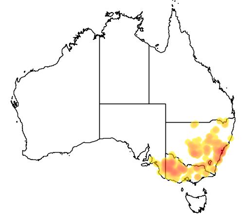 Micromyrtus ciliata flora location map