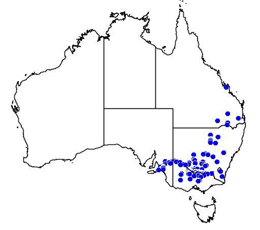 Myriophyllum papillosum flora location map