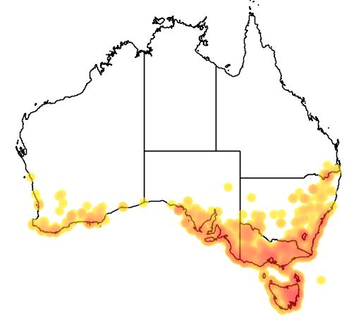 Pelargonium australe flora location map