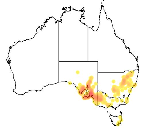 Pimelea stricta flora location map