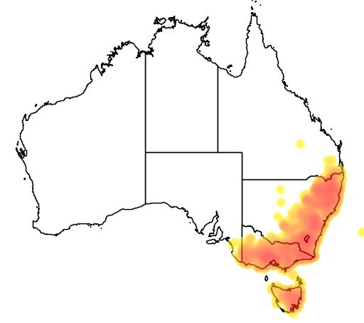 Poa sieberiana flora location map