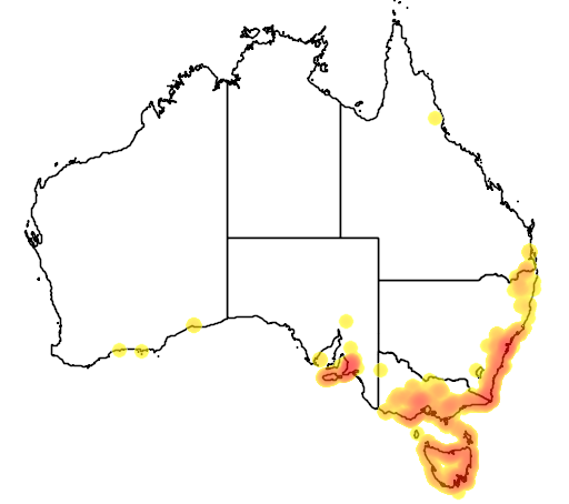 Pultenaea daphnoides flora location map