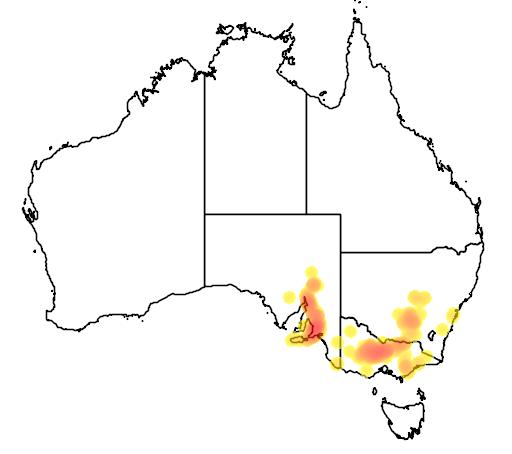 Pultenaea largiflorens flora location map