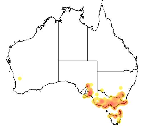 Spyridium parvifolium flora location map