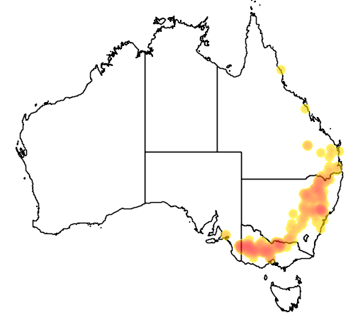 Templetonia stenophylla flora location map
