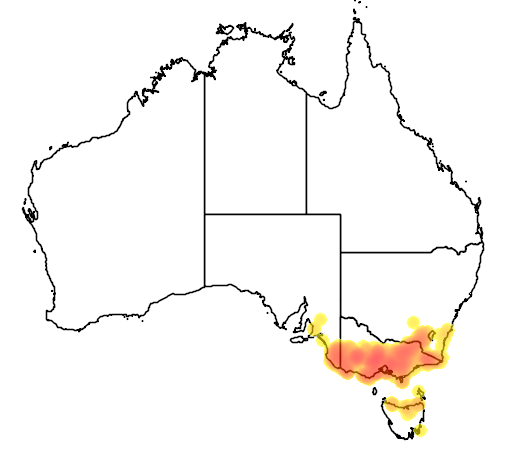 Tetratheca ciliata flora location map