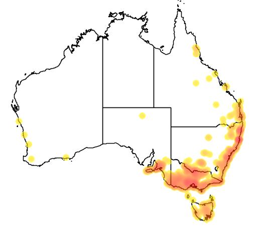 Triglochin procera flora location map