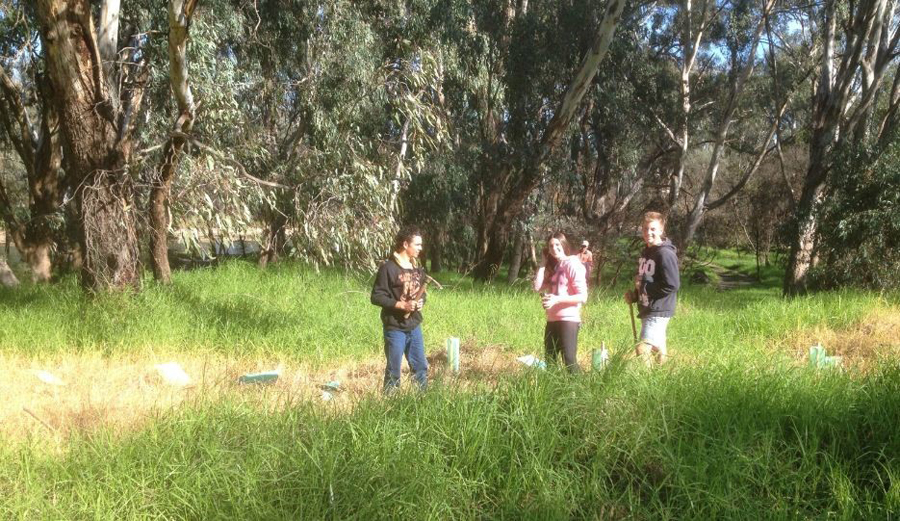 James Fallon School at Spillway Reserve - Woolshed Thurgoona Landcare Group