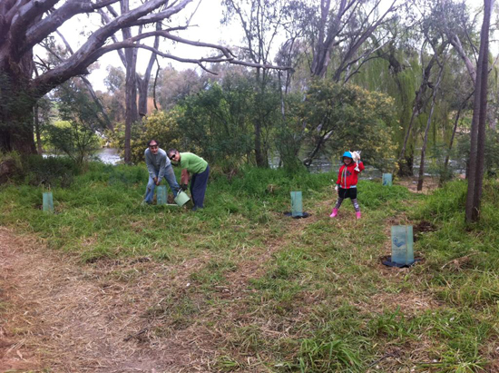 Tree planting at the Hume Spillway - Woolshed Thurgoona Landcare Group